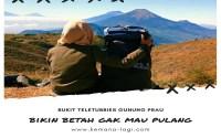 Bukit Teletubbies Gunung Prau