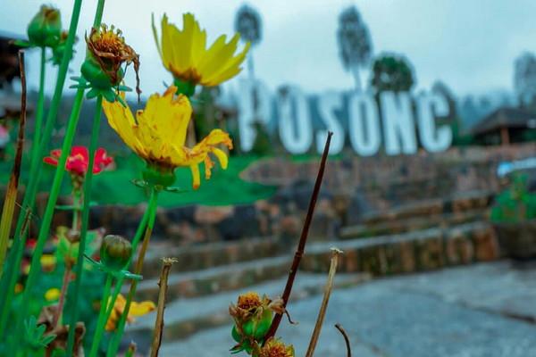Taman Wisata Alam Posong