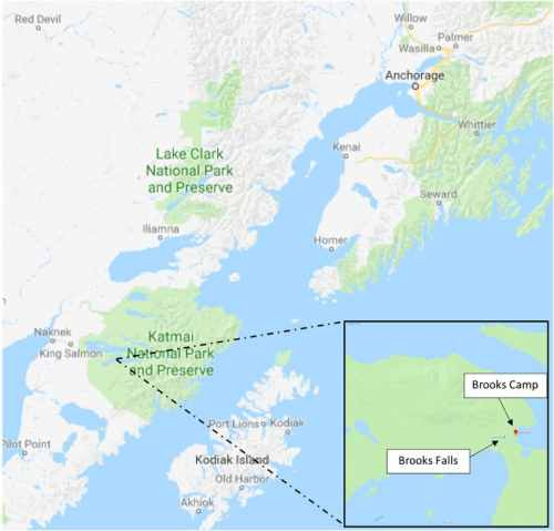 Katmai National Park And Preserve Location Bear Viewing Map