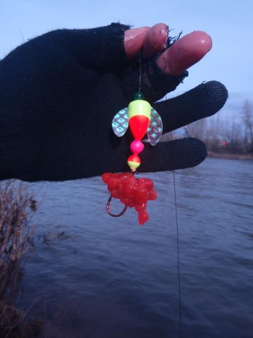 This picture shows how we use a Worden Spin-N-Glo with eggs to target Alaska King Salmon
