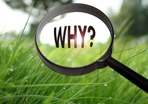 Magnifying glass with the word why on grass background. Selective focus