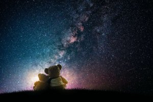 Teddy bears under the stars