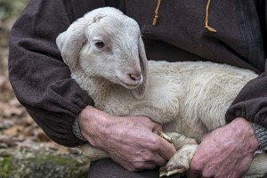 A shepherd holding a lamb
