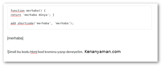 Wordpress Shortcode kısmı