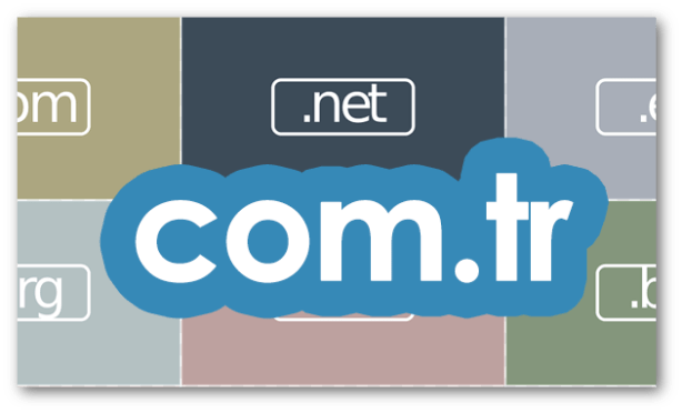 How does Domain work?