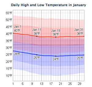 New York January Temperature