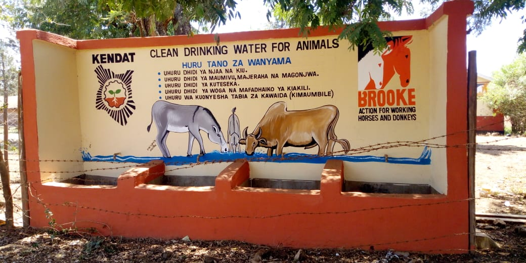 DCC Donkey water trough project for Thiba pupils 2019