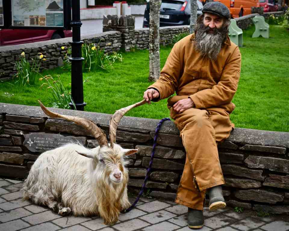 2018's King Puck - A city square along the Ring of Kerry Photo by KendellKreations