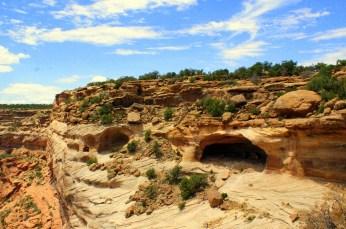 Yucca cave at Massacre Cave Overlook. (Photo/Kendra Yost)