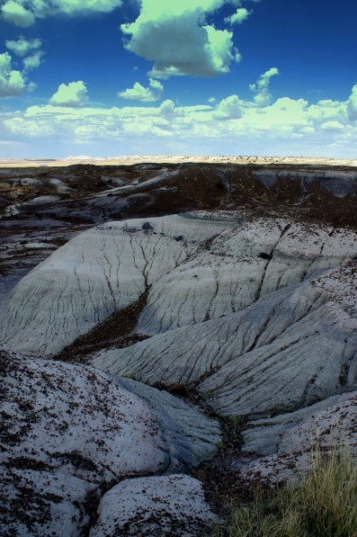 The Crystal Forest in the Petrified National Monument in Arizona. Photo/Kendra Yost