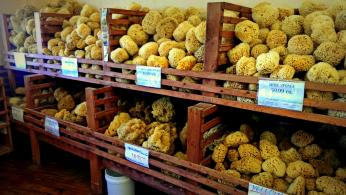Sea Sponges for sale in Tarpon Springs, Florida. Photo/Kendra Yost