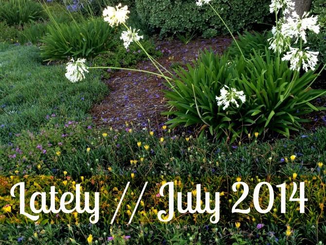 Lately  July 2014
