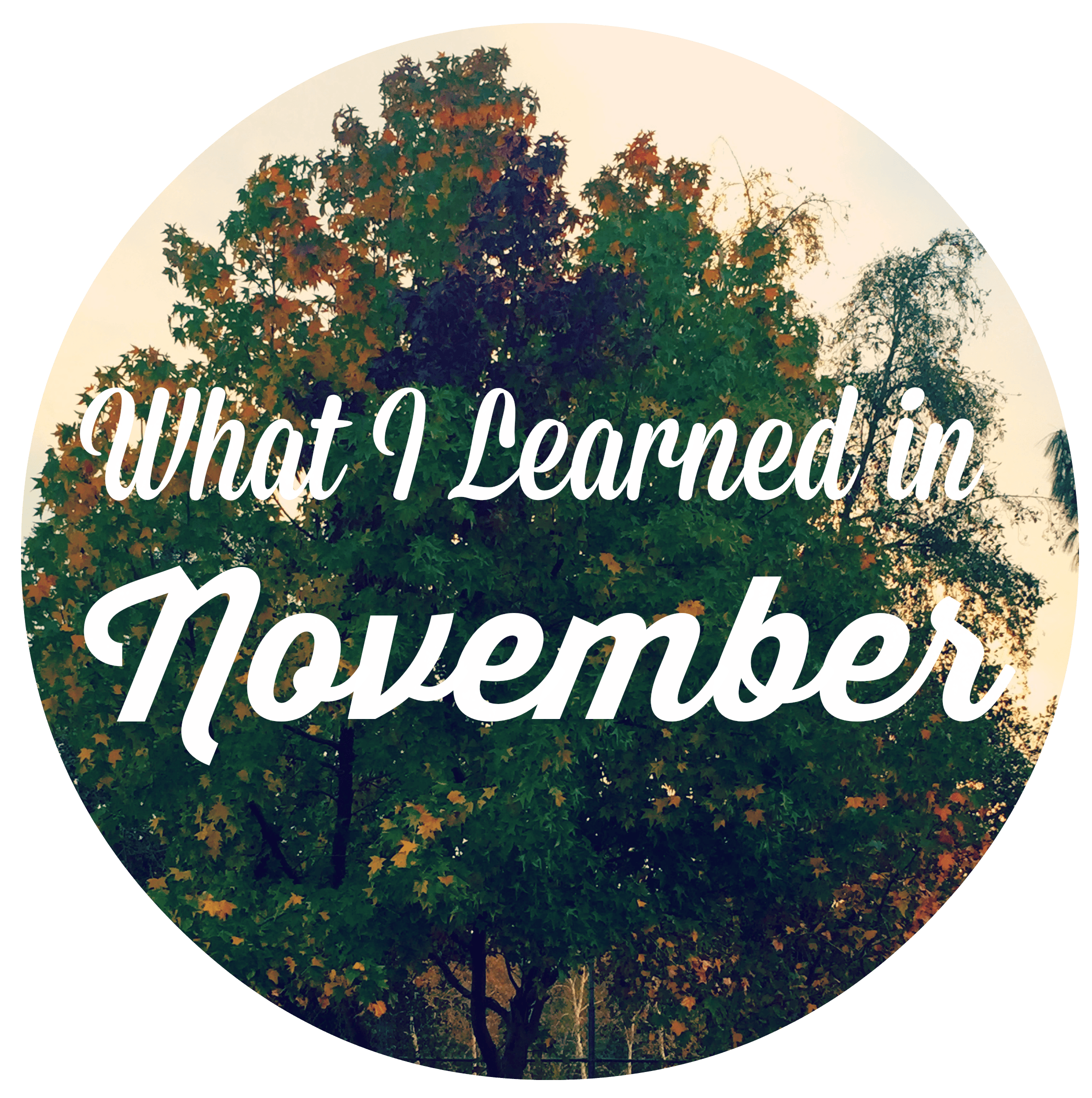 What I Learned in November