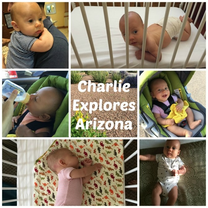 Charlie Ezplores Arizona