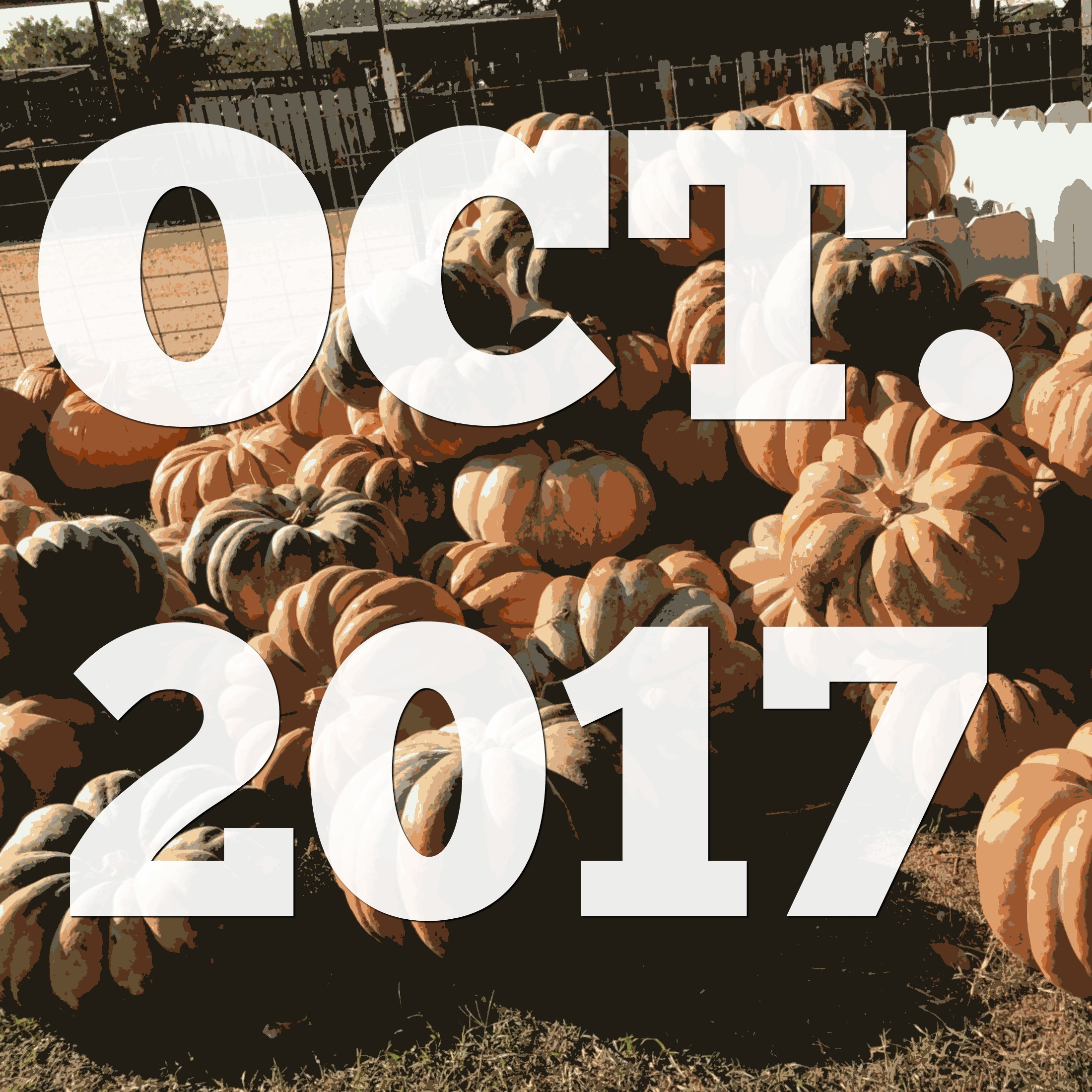 Fifteen Things I Learned in October {2017}