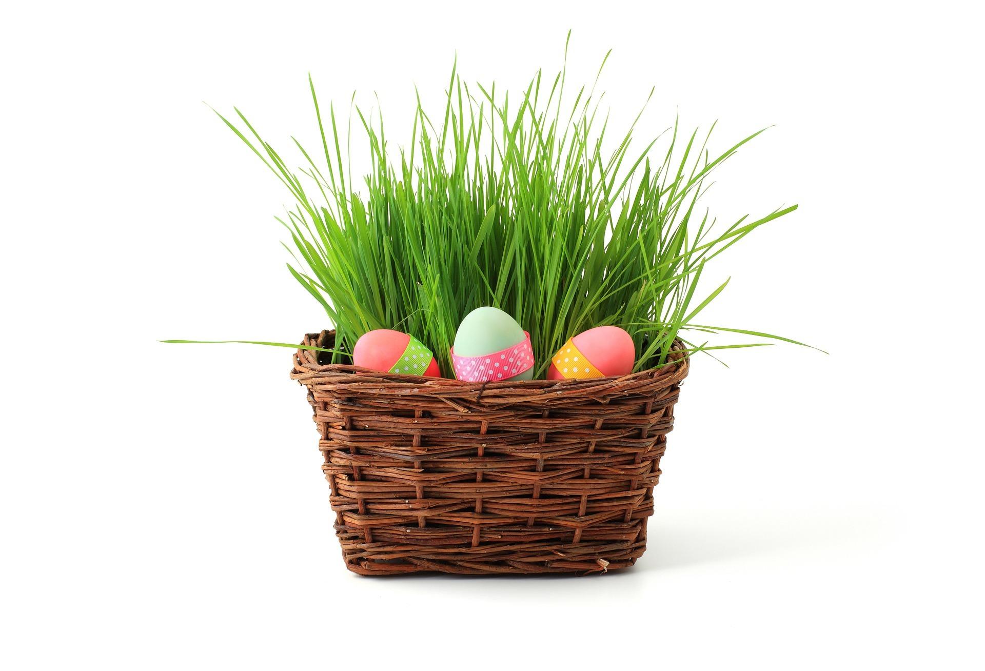 Easter basket filler ideas kendranicole easter basket filler ideas negle Choice Image