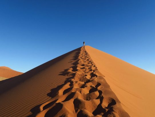 Read this Guide to Avoid Potential Disaster Before Visiting Sossusvlei Namibia