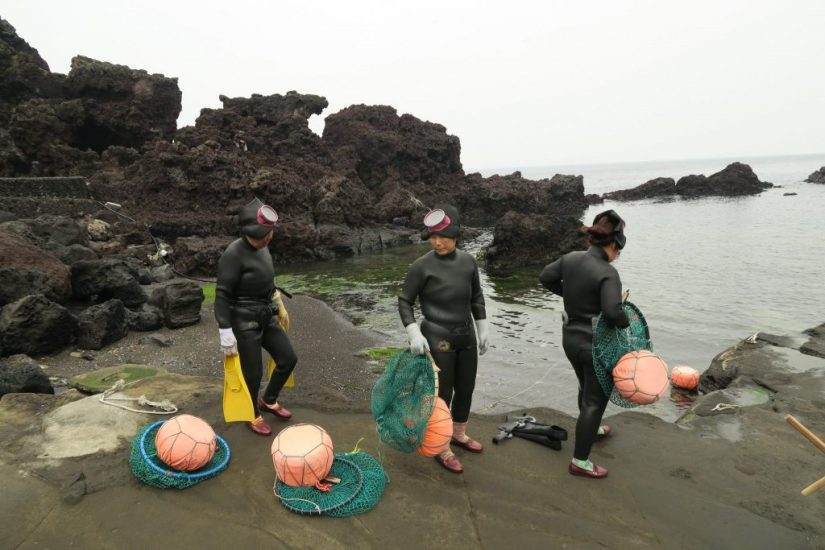 Jeju Island, Jeju Island – Review of the Most Peaceful of the Seven Wonders of Nature