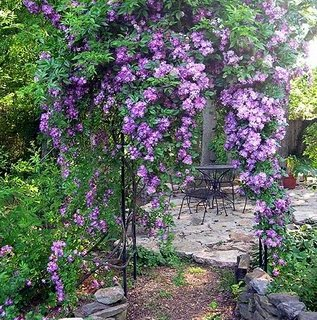 Beautiful Alabama Gardens with Phillip Oliver
