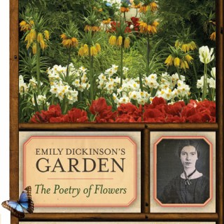 Perennial, Vegetable and Shade Garden Design with Amy Ziffer