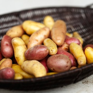 Potatoes in Containers with Doug Hall
