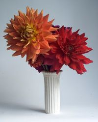 Dahlias_cylinder_beaded
