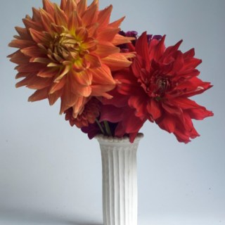 Ceramics and a Passion for Dahlias with Frances Palmer