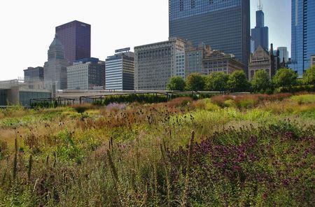 Chicago_Lurie_gardenLR