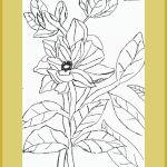 Flowering pen art by Sanath kenfortes Btm art class