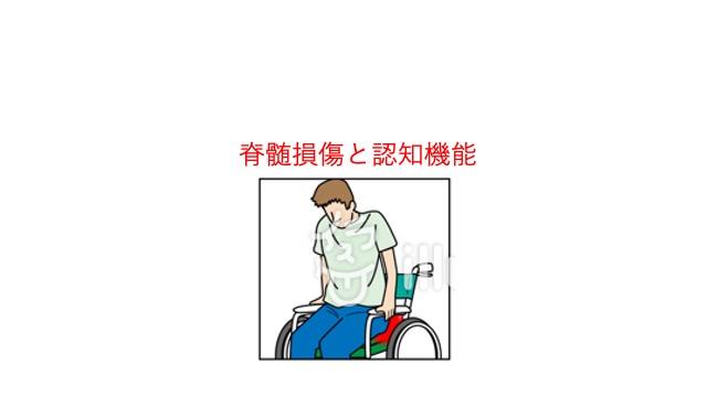脊髄損傷と認知機能