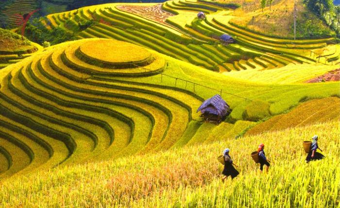 Tháng 10 nên đi du lịch ở đâu? 20 nơi đẹp nên đi trong tháng 10