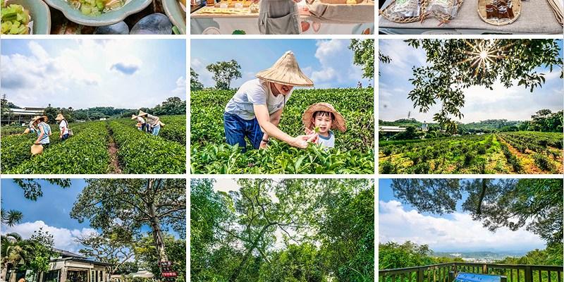 苗栗頭份一日遊   日新有機茶園採茶製茶新體驗,頭份後花園秘境探訪,山守現輕農市集品咖啡。