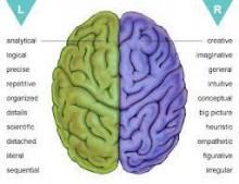 脳画像 みかた