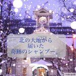【お客様満足度&お客様シェア率】No.1シャンプートリートメント!!