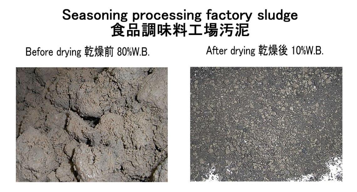 seasoning processing factory sludge drying KENKI DRYER 14/8/2018