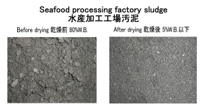 seafood processing factory sludge sludge dryer kenki dryer 31/3/2020