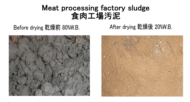 meat processing sludge sludge drying sludge dryer 23/3/2020