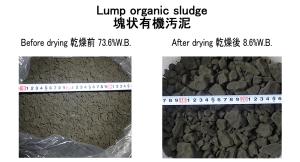 Lump organic sludge drying organic sludge dryer KENKI DRYER 20/05/2021