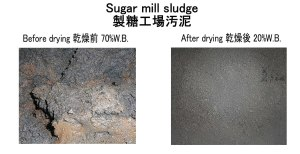 製糖工場汚泥 乾燥前後 2017.9.9