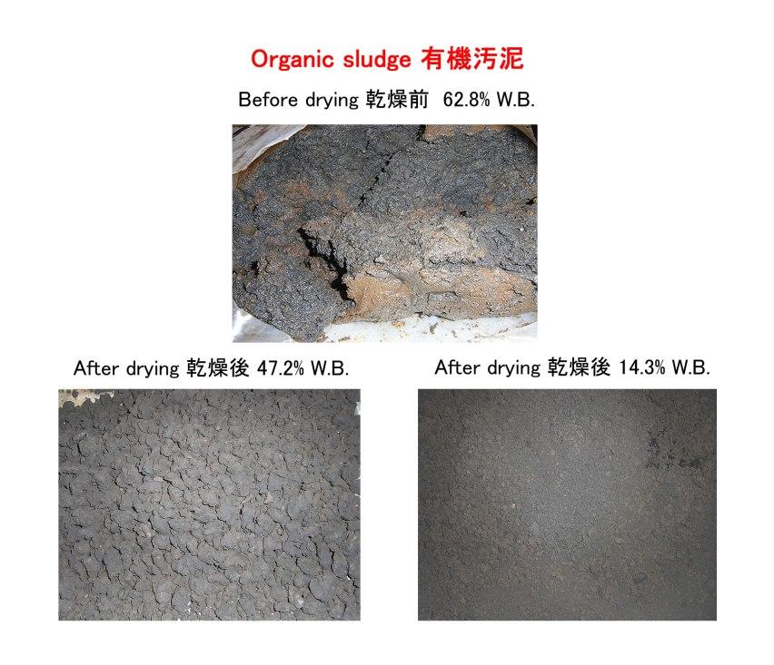 有機汚泥 乾燥後の比較 kenki 2017.10.26