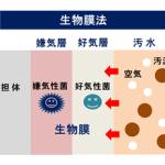 生物膜法 排水処理法 汚泥乾燥機 KENKI DRYER 2018.2.24