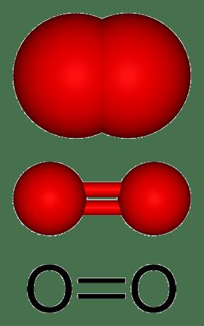 二酸素分子 O2 ヒートポンプ汚泥乾燥機 KENKI DRYER 2020.10.20