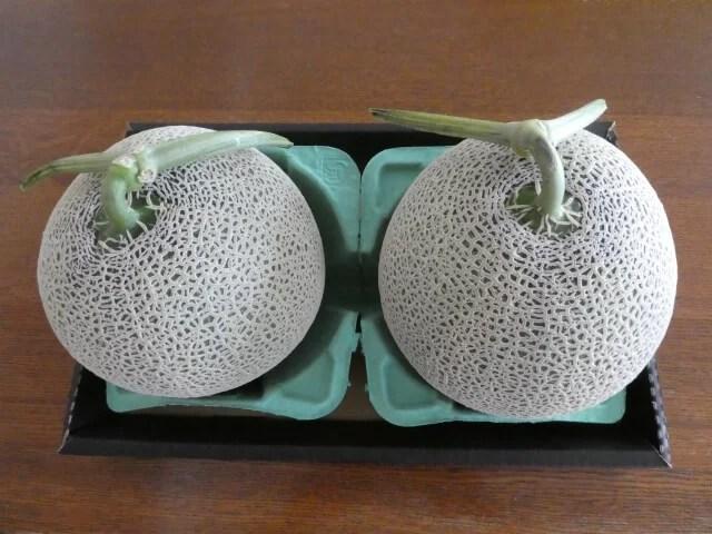 高級フルーツ!メロンだって栽培できちゃう!その方法とポイント5選