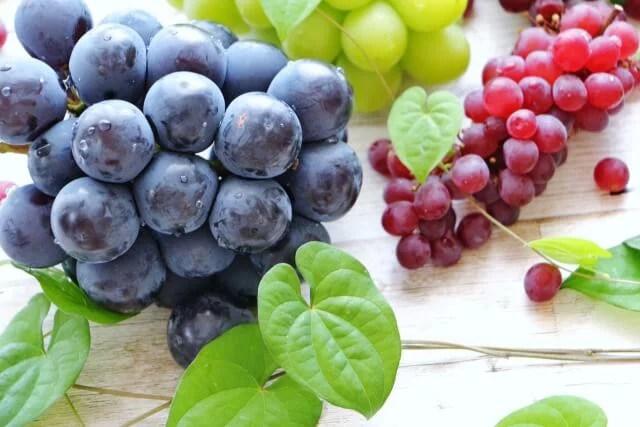 ぶどうの栄養効果で美容と健康を手に入れる5つの効能
