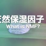 天然保湿因子(NMF)とは?天然保湿因子(NMF)の役割・不足時の影響をまとめてみた!