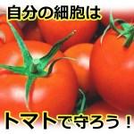 トマトのリコピンは細胞の守り神!ジュースや生で効率的な吸収方法! でも加熱は大丈夫?