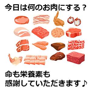 肉ごとの栄養素の違い