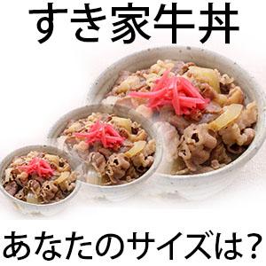 すき家牛丼2