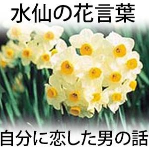 水仙の花言葉