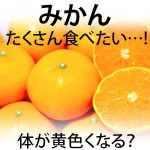 みかんを食べ過ぎると黄色くなる・太る・病気(糖尿病・下痢)に?!子供や妊婦は何個まで?